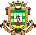 Escudo CD Tropezon